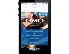 GMO-ISM